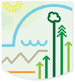 business eco systems
