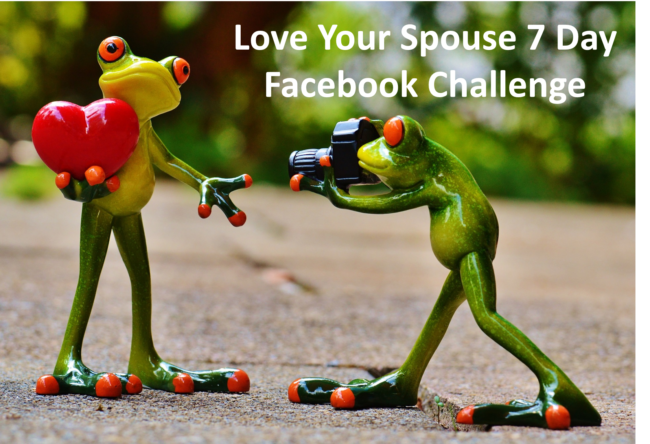 Frog Spouse coaching challenge